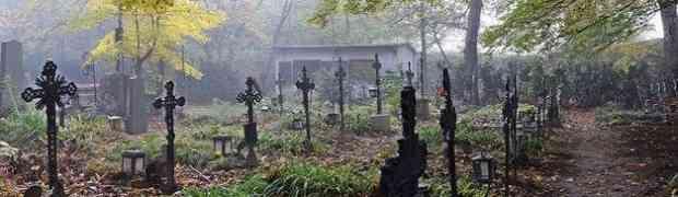 Spaziergang Friedhof der Namenlosen